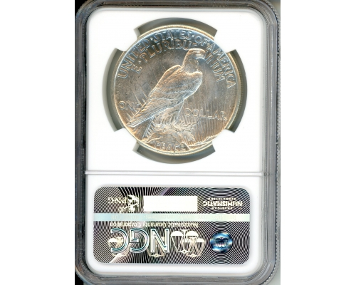PMJ Coins 1921 $1 NGC MS64 HIGH RELIEF