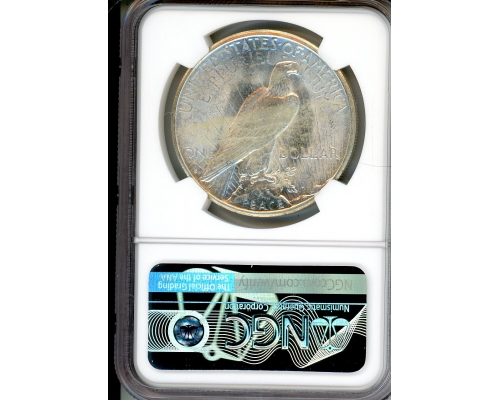 PMJ Coins & Collectibles, Inc. 1922 S $1 NGC MS62